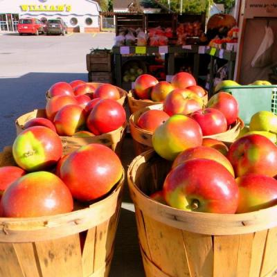 Hoyt Orchards Gallery 02